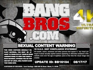 BANGBROS - Safety First, Shagging 2nd with Towheaded Honey Dasiy Lynne Thumb